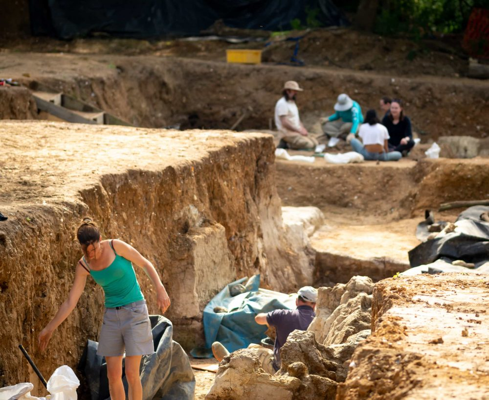 Main Excavation Area at the Barnham Palaeolithic Excavations