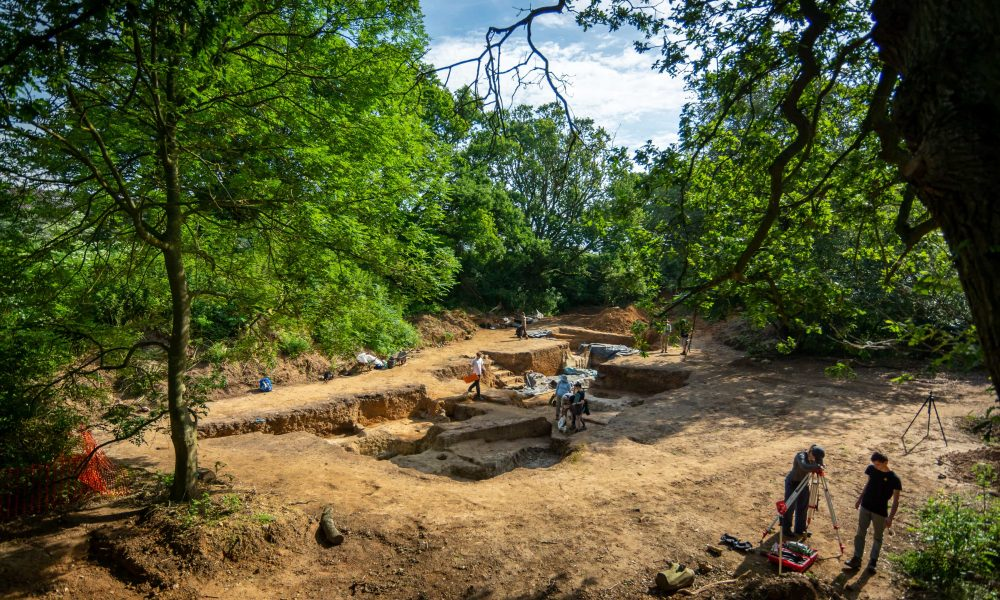 Excavations at the Faunal Area, Barnham