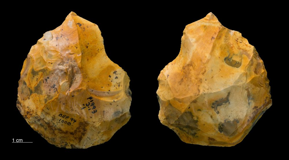 Handaxe found at the Barnham Palaeolithic Excavations