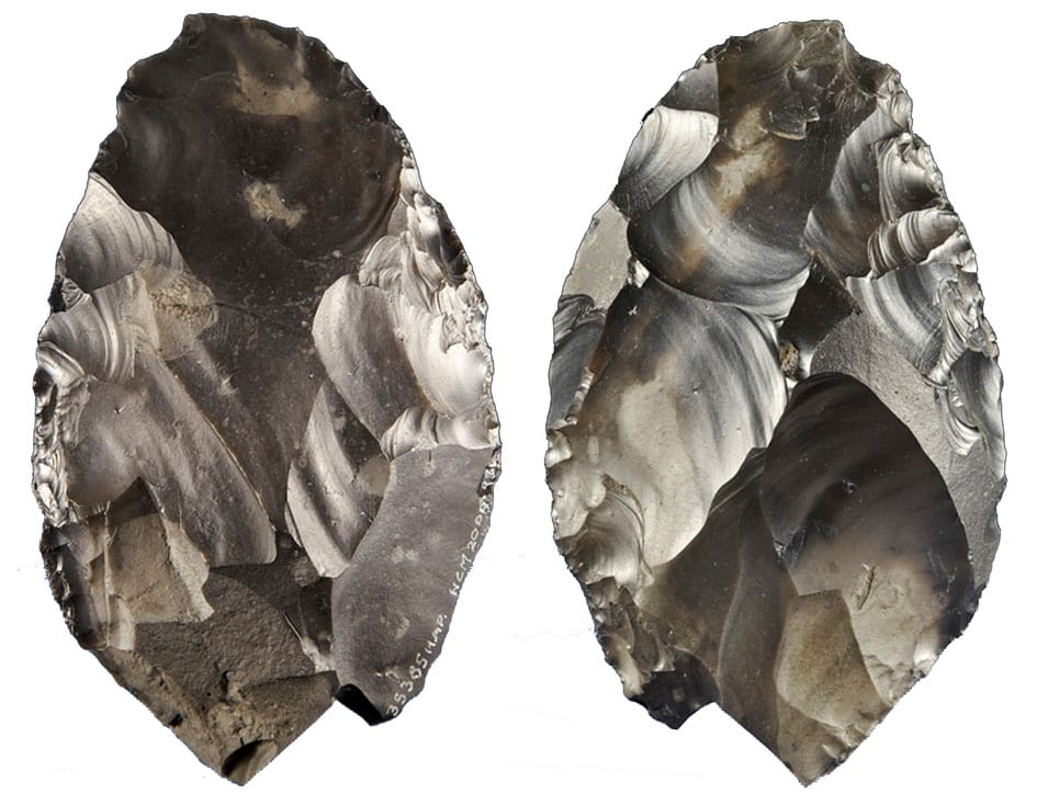 Palaeolithic handaxe from Happisburgh.